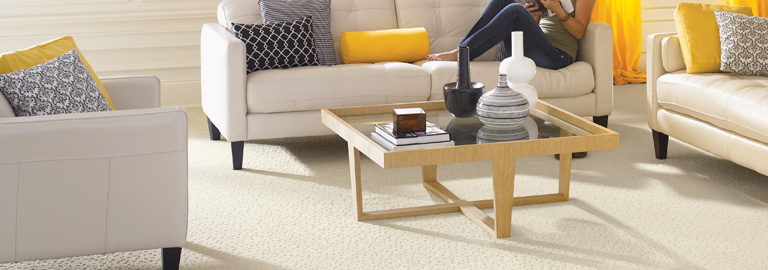 Carpet Cleaning – Residential